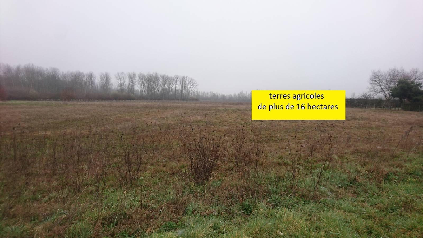 Vendre terrains agricoles sur axe bordeaux libourne for Container sur terrain agricole